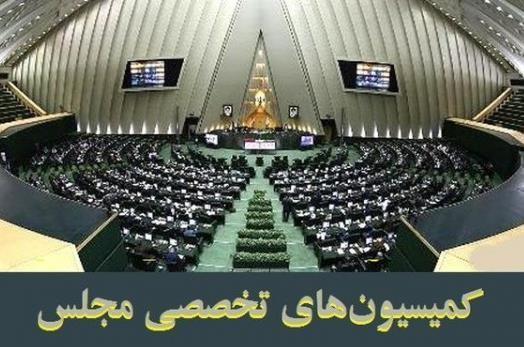 عواقب لابی گری در تشکیل کمیسیون های تخصصی مجلس